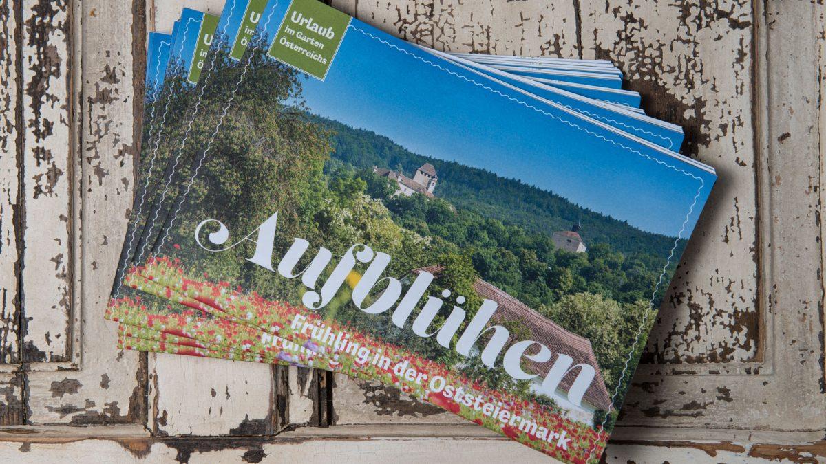 Aufblühen in der Oststeiermark_Magazin